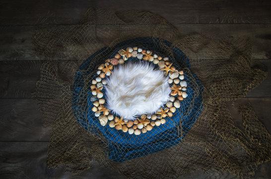 Fish net and seashell Newborn photography digital background prop.