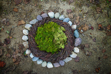 Moss and River Stone Rocks Nature Newborn photography digital background prop.