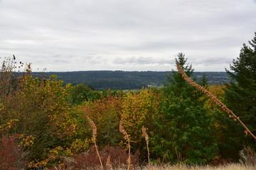 autumn hilltop view of mountain horizon