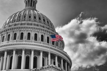US Flag Capitol State Building Washington DC, USA Wall mural