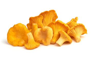 Fototapeta Raw fresh chanterelles mushrooms, isolated on white background. obraz