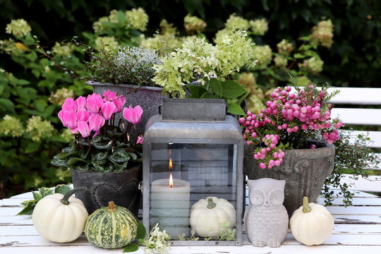 garden decoration with autumn flowers, pumpkins and candle