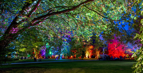 last night in the enchanted forest - the magic park