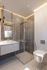 3d render interior design of the bathroom with glass walk in shower