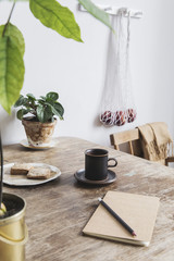 Vintage interior design of kitchen space with small table against white wall with simple chairs, cup of coffee and plants. Minimalistic concept of kitchen space.