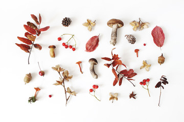Autumn styled botanical arrangement. Composition of mushrooms, acorns, pine cones, beechnuts, colorful dried leaves, little apples and rowan berreis on white table background. Fall design, flat lay.