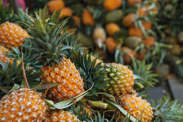 Background with a heap of ripe pineapples