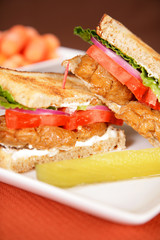 Vegan & Vegetarian Food - Sauteed Seitan Sandwich