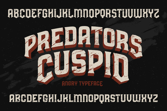 Vector vintage typeface with scratched old texture effect