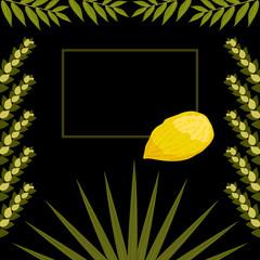 Sukkot. Judaic holiday. Traditional symbols - Etrog, lulav, hadas, arava. Frame for your text. Black background