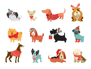Collection of Christmas dogs, Merry Christmas illustrations of cute pets with accessories like a knited hats, sweaters, scarfs