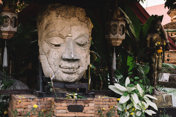 a large statue of Buddha head among the flowers a place of worship Buddhism Asia Thailand Chiang Mai