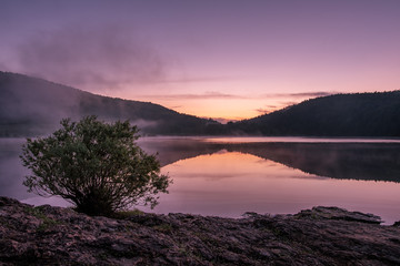 French landscape - Jura. View over the lake of Narlay in the Jura mountains (France) at sunrise with tree in the foreground.