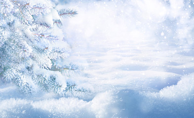 Winter Christmas scenic background with copy space. Snow landscape with fir-trees covered with snow close-up, snowdrifts and snowfall against the sky on nature outdoors, copy space, toned blue.