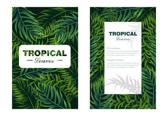 Tropic leaves card Vector realistic. detailed 3d exotic palm leaf
