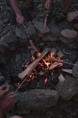 Group of friends roasting hot dogs on campfire