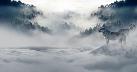 Foto auf Leinwand Wolf SchneeWinter