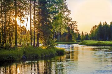 Sunset over river Sunlight through trees