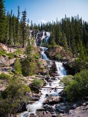 Tangle Creek Falls in Jasper National Park, Canadian Rockies, Alberta, Canada.