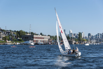 Sailboat on Lake Union in Summer