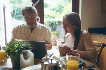 Senior couple using laptop while having coffee