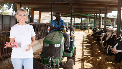Female proffesional farmer  standing near cow and man sitting at car