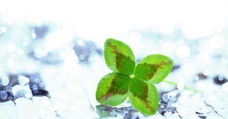 green glover background