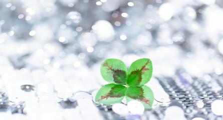 lucky clover background