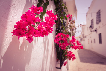 flowers hanging from the window on picturesque narrow street with white houses in village of Altea, Spain. Travel and vacation concept. Altea is a mediterranean town in the heart of Costa Blanca