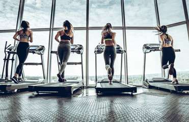 Four attractive young sports women is working out in gym.