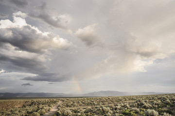 Rainbow and cloudscape over sagebrush desert, Taos, New Mexico, USA