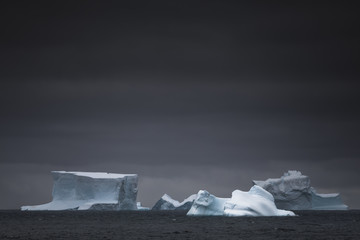 Icebergs in sea, South Orkney Island, Antarctica