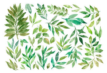 Collection of watercolor green leaves.