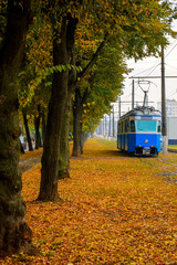 Photo of blue tram near orange autumn park with orange leaves
