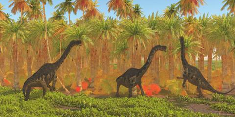 Europasaurus Dinosaurs