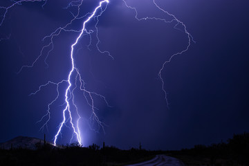 Lightning bolt strikes a hillside during a storm near Tucson, Arizona.
