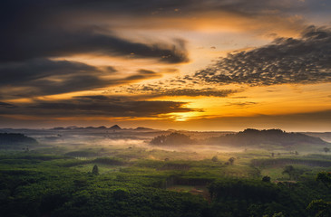 Wall Mural - Beautiful sunrise scene of nature countryside, Surat Thani, Thailand