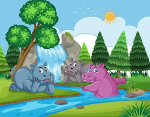 hippos in waterfall scene
