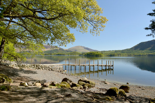 Shore of Derwentwater near Keswick, Lake District