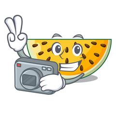 Photographer a piece of a yellow watermelon cartoon
