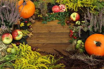 Fototapeta kolorowe dary jesieni obraz