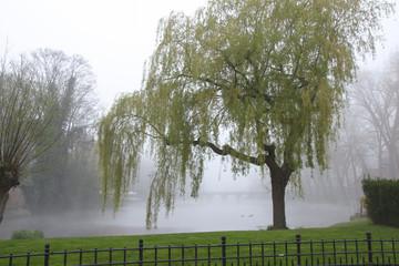 Mystical Landscape, Brugge, Fog, Minnewaterpark, Ducks