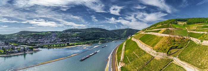 Rheinbiegung und Weinberge bei Bingen