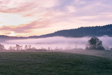 French landscape - Jura. View over a flower meadow in the early morning with a light fog.