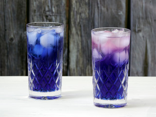 Adding a dash of lemon juice to a butterfly pea flower (Clitoria ternatea) soda turns its color to a vibrant magenta.