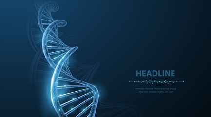 DNA. Abstract 3d polygonal wireframe DNA molecule helix spiral on blue. Wall mural