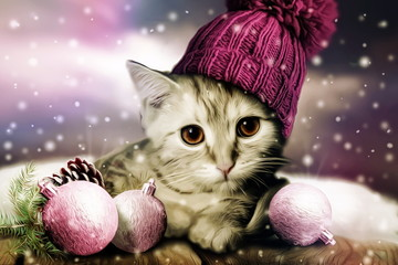 Winter christmas cat