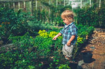 Little toddler doing some gardening