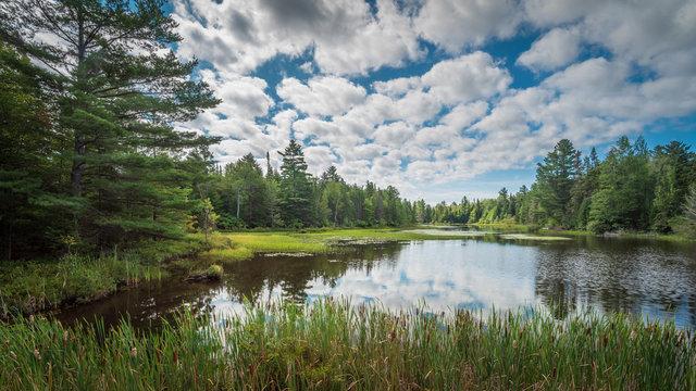 Summer landscape in the Adirondack region of New York