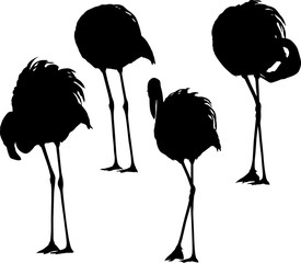 set of four flamingo black silhouettes on white